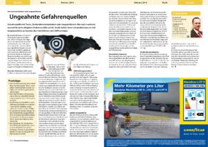 Stragü 02/2013, Dr. Schärmer – Haftung Verkehrsunfälle